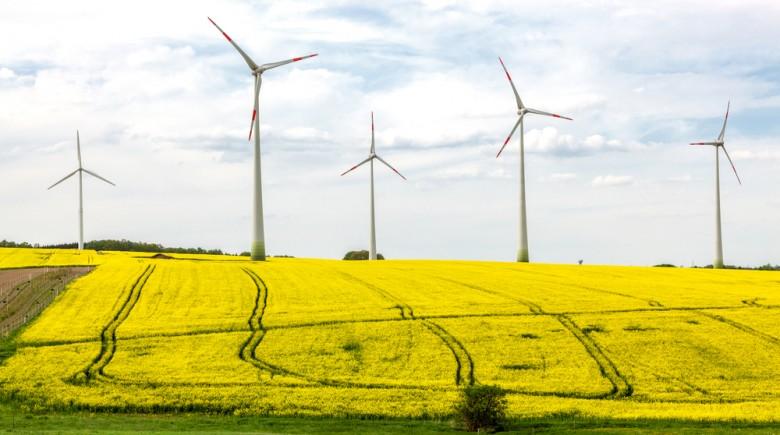 wind-energy-money